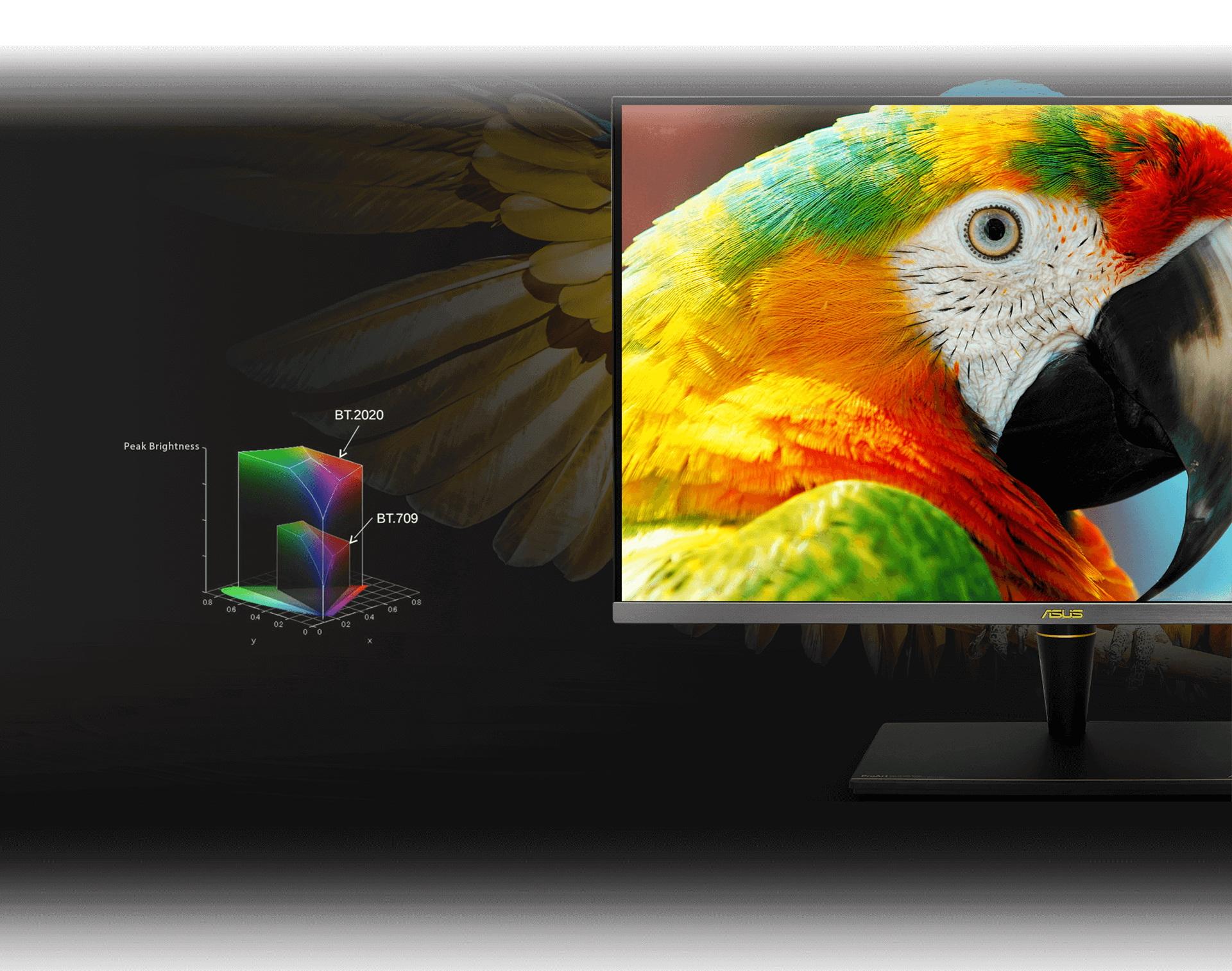 Asus bán 2 màn hình PC đầu tiên có Dolby Vision