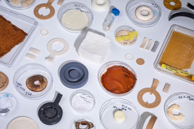Korvaa: Tai nghe trùm đầu làm từ chất liệu nấm nhân tạo