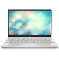 Laptop HP Pavilion 15-cs3061TX 8RE83PA (XÁM)
