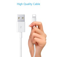 Cable Pisen Lightning(Fast) 1000mm