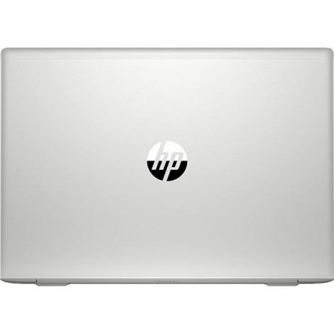 Laptop HP Probook 455 G7 1A1A8PA (BẠC)