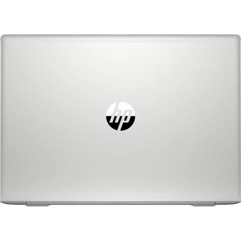 Laptop HP Probook 455 G7 1A1B1PA (BẠC)