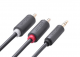 CABLE Audio 3.5mm-> 2 RCA Ugreen 2m (10510)