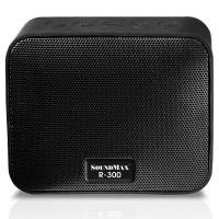 Loa SoundMax R-300